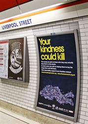 killing-with-kindness