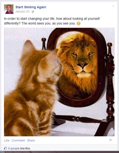 rahman-lion